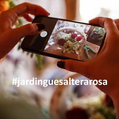 #jardinguesalterarosa